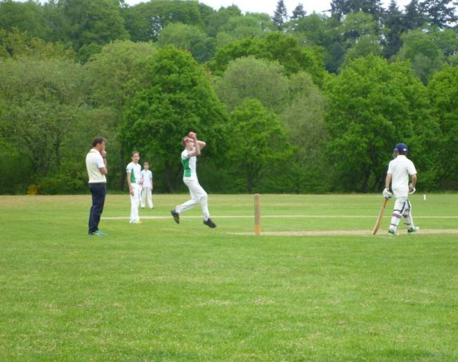 Cricket Lesson